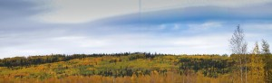 Pan view of Koponen Homestead hilllside and surrounding property